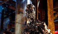 Terminator sin salvación