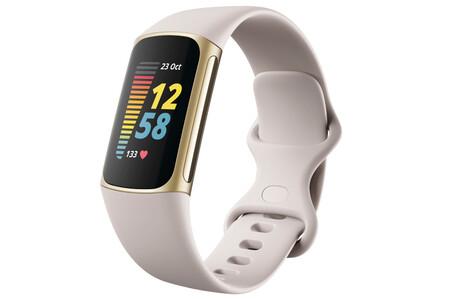Fitbit1