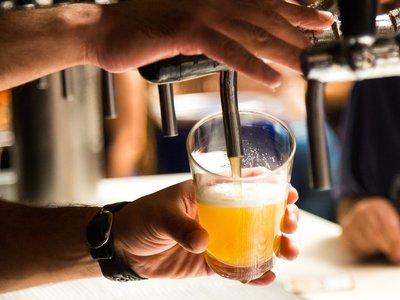 Científicos descubren cómo hacer cerveza sin lúpulo, más sostenible y con el mismo sabor