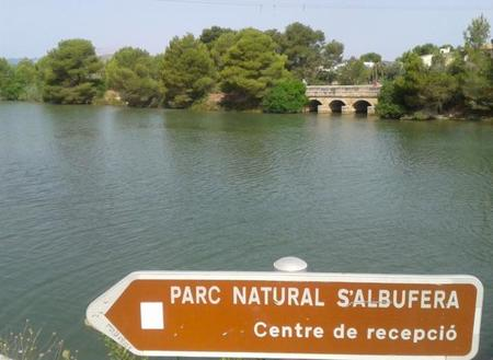 Recorriendo la Albufera de Mallorca
