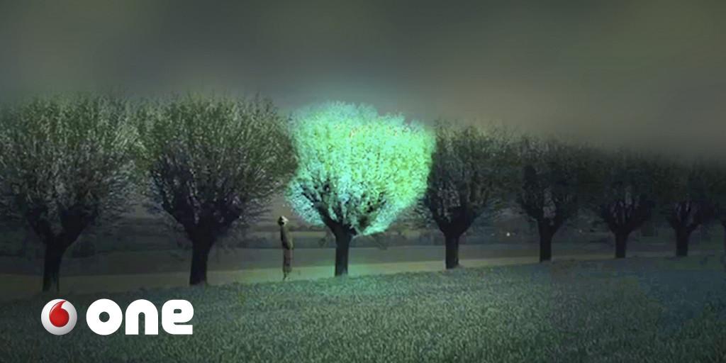 Árboles que brillan para sustituir a las farolas. ¿Y si el mundo sostenible pasa por la biotecnología?