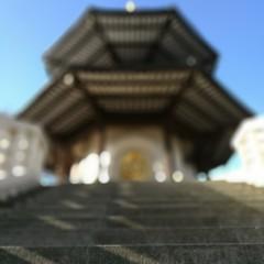Foto 3 de 32 de la galería fotos-hechas-con-huawei-p9 en Xataka