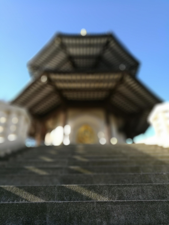 Foto de Fotos hechas con Huawei P9 (3/32)