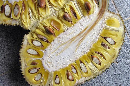 Yaca o jackfruit: propiedades, beneficios y su uso en la cocina