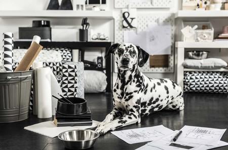 Ikea Pets Furniture 04