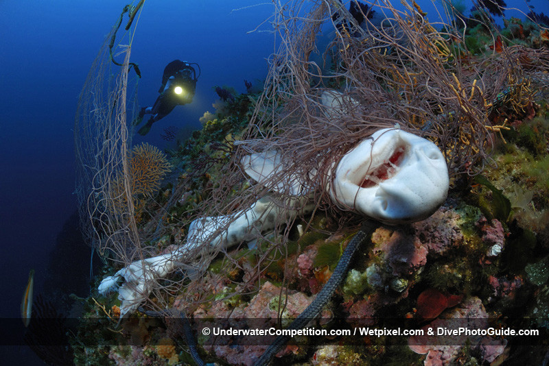 Foto de Underwater competition (7/34)