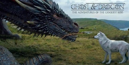 Got Drogon Ghost