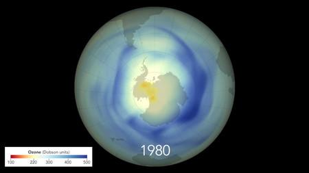 ozono 1980