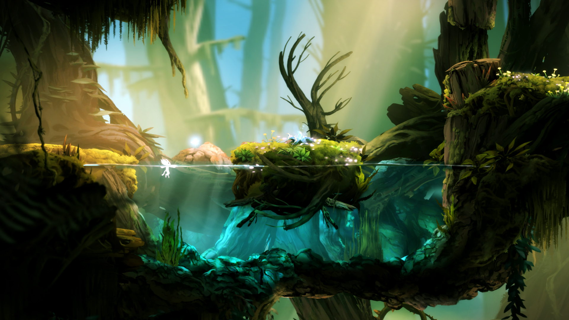 Foto de Ori and the Blind Forest (1/5)