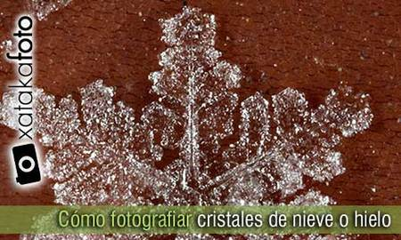 Cómo fotografiar cristales de nieve