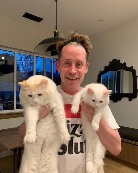 Macaulay Culkin cumple 40 años, ¡por fin se puede quedar solo en casa!