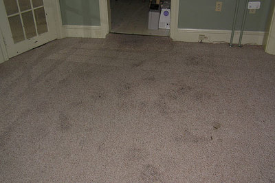 Un quitamanchas casero para alfombras