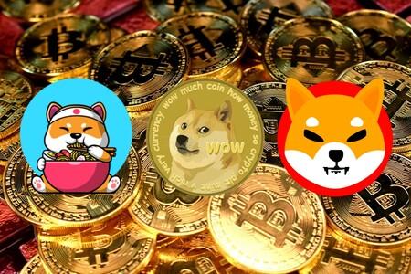 Las memecoins son puro reflejo de las criptomonedas: Dogecoin no sube y se desploma solo, Shiba y Coshi se apuntan a la locura