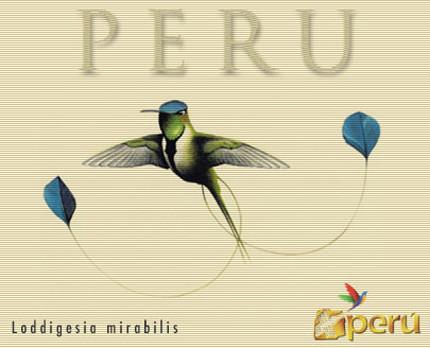 Perú: un paraíso para la observación de aves