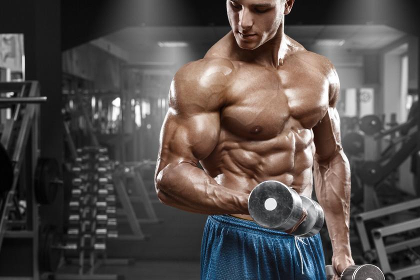 Entrenamiento en el gimnasio cover image