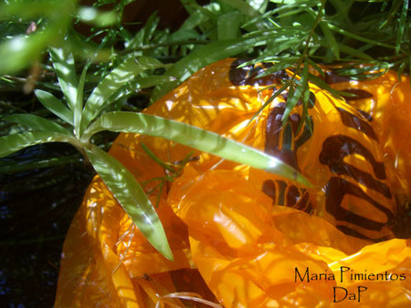 No uses bolsas de plástico o todos acabaremos comiéndolas