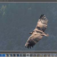 Darktable, la alternativa open source a Lightroom que sí puedes usar en Linux, recibe una enorme actualización y lavado de cara