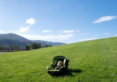 Los bebés y la flora intestinal