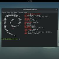 Microsoft y Debian lideran la lista de productos con más vulnerabilidades en los últimos 20 años