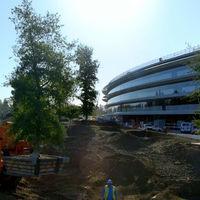 El Apple Park llama tanto la atención que hasta sube los precios de las viviendas a su alrededor