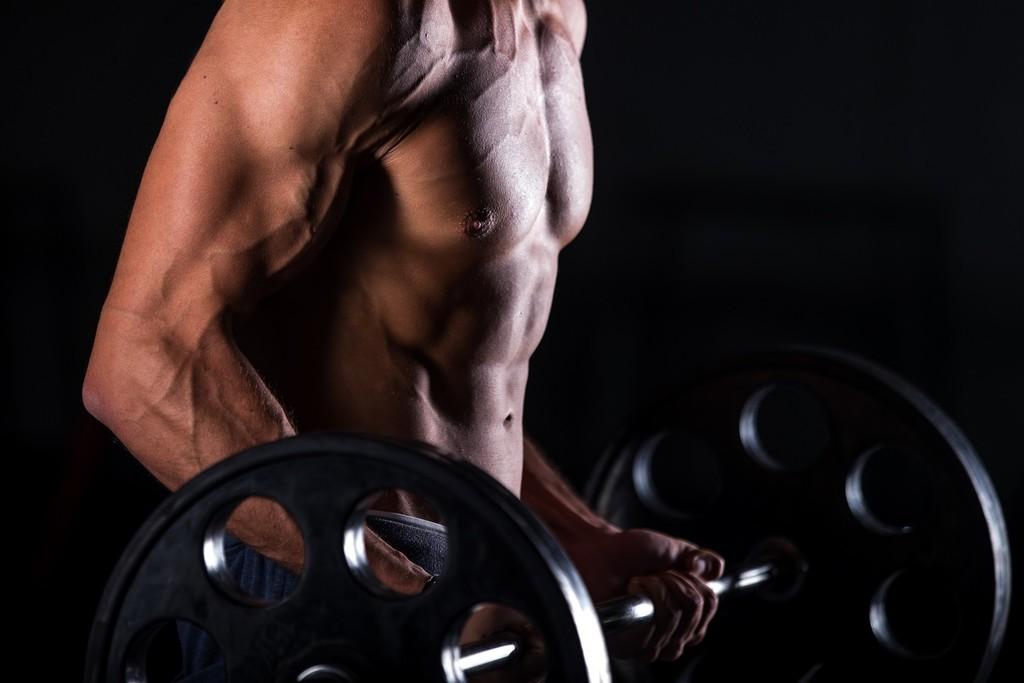 Ejercicios con mancuernas para cada grupo muscular