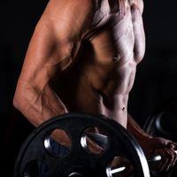 Un ejercicio de aislamiento para cada grupo muscular