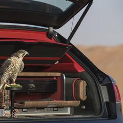 Foto 29 de 36 de la galería bentley-bentayga-falconry en Motorpasión