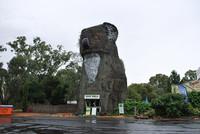 Koala gigante, Dadswells Bridge