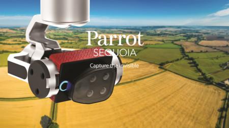 Parrot Sequoia quiere convertir al dron en el mejor amigo de los agricultores