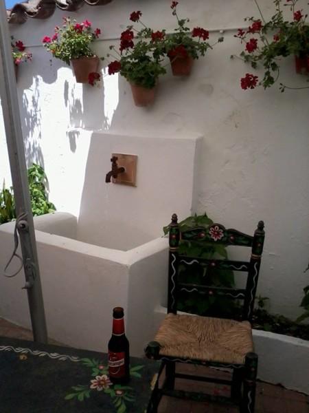 Jacaranda Huelva