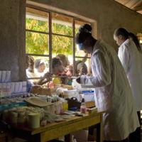 15 gráficos que explican cómo estamos acabando con la malaria