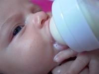 La evolución y el consumo de leche. Cómo nos hicimos Mampiros