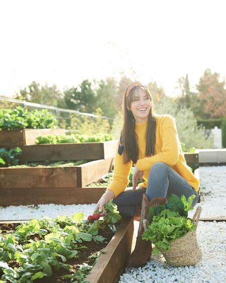 Paula Echevarría, Helen Lindes y otras famosas tienen huerto urbano: así puedes seguir la tendencia si no tienes jardín en casa