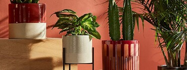 7 macetas con estilo para llenar tu terraza de plantas y flores