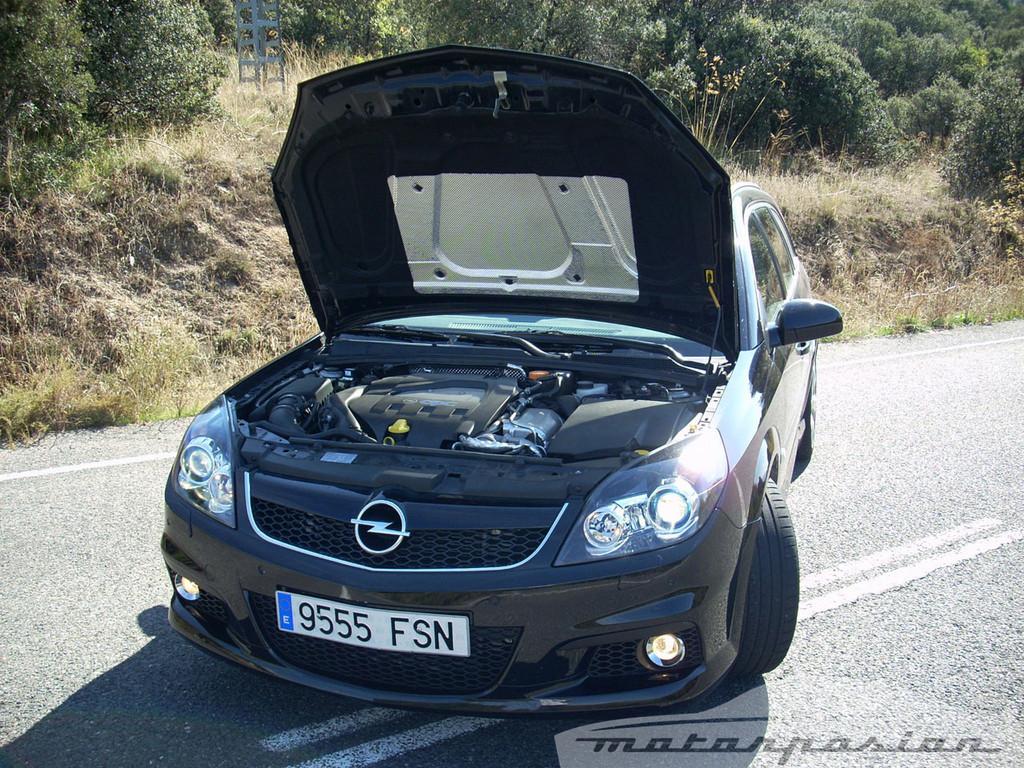 Foto de Opel Vectra SW OPC (13/42)