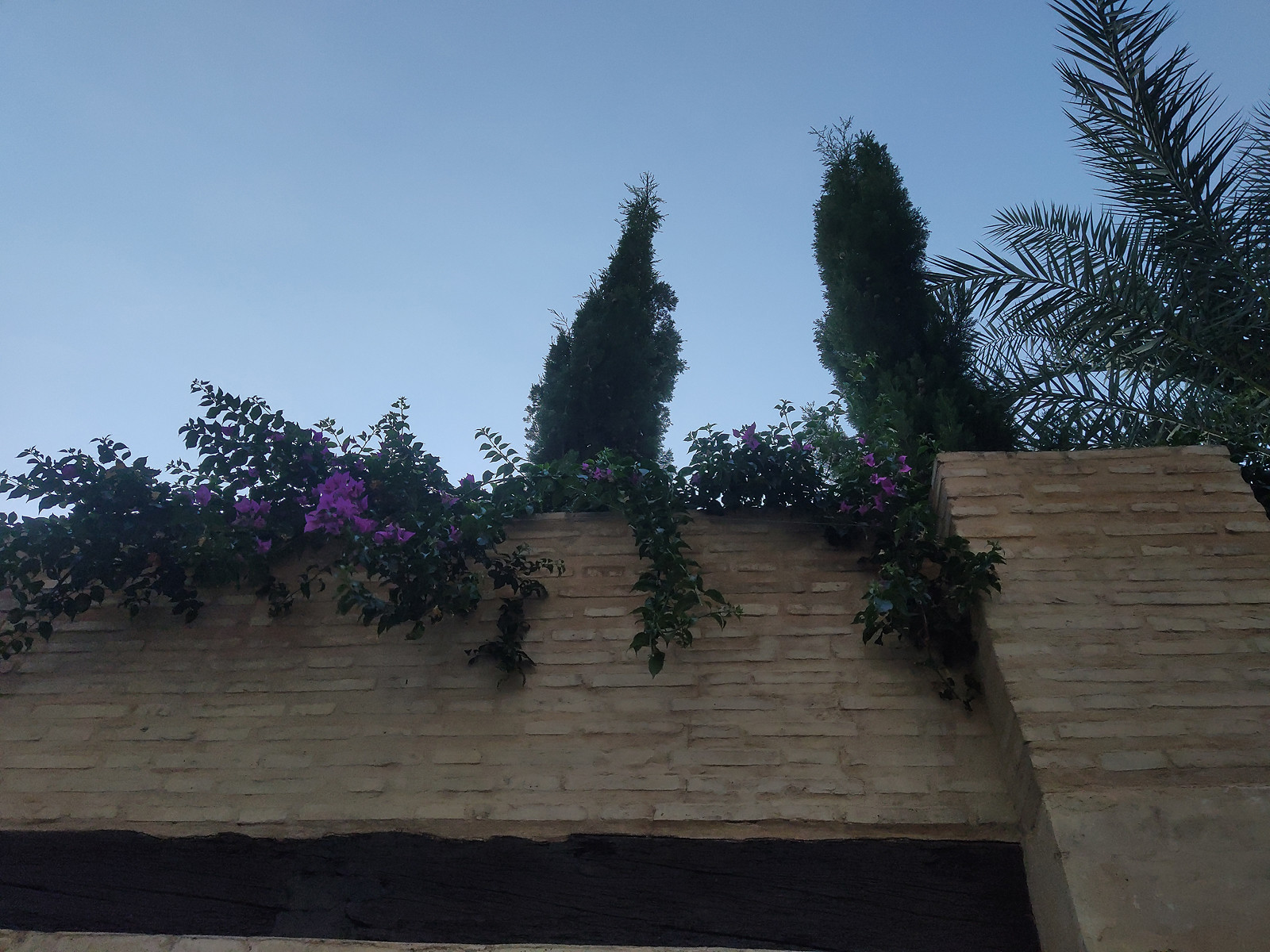 Foto de Nubia Z20 (8/31)