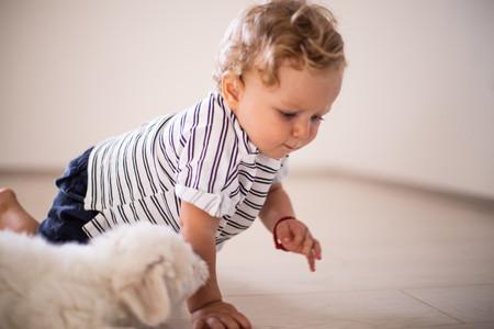 motricidad fina del bebé