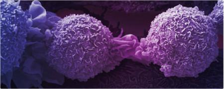 Investigador mexicano desarrolla biosensores para detección temprana de enfermedades