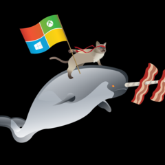 fondos-de-pantalla-de-windows-insider