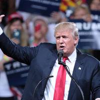 Diez tuits y un video con los que Donald Trump ha insultado a México