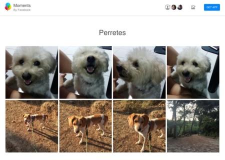 Facebook Moments permite ahora compartir fotos vía web... pero sabe a poco