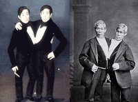 Los gemelos de Siam que dieron nombre a los siameses