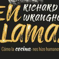 Libros que nos inspiran: 'En llamas. Cómo la cocina nos hizo humanos' de Richard Wrangham