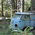 El rescate de esta Volkswagen Type II de 1955 es lo más romántico que vas a ver hoy