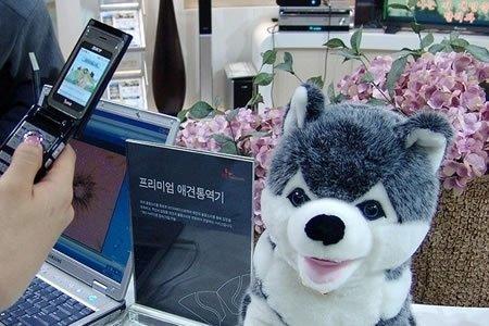 Sk Telecom te comunica con tu perro
