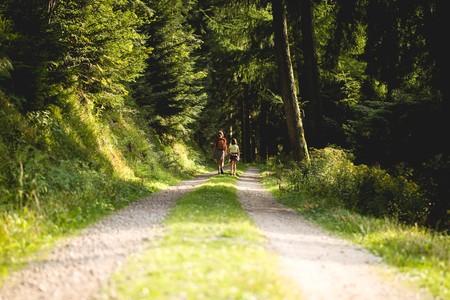 Diez consejos para que tus salidas de senderismo sean un éxito