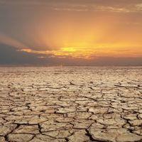 En 50 años, un tercio de los humanos podría vivir con temperaturas similares a las del Sahara