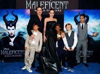 Angelina Jolie, ¿actriz o estrella mediática?