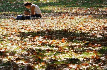 otoño6