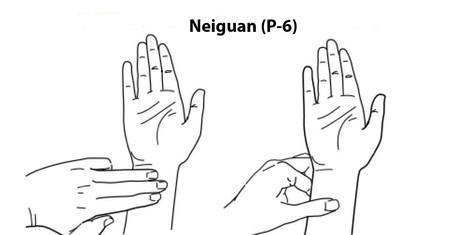 Dibujo de sónde se sitúa el Neiguan P 6